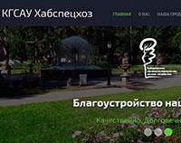 КГСАУ «Хабаровское специализированное лесное хозяйство»