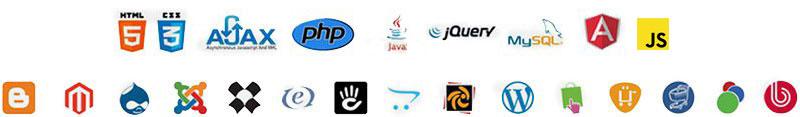 работаем с любыми технологиями и всеми популярными CMS